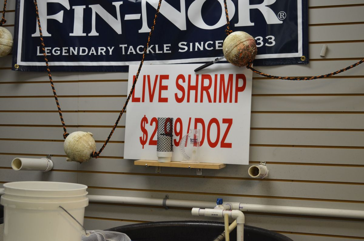 Stuart Live Bait Tackle and Fishing Supplies 268